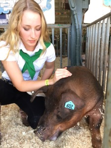 "Alexa admits, ""It is hard to say goodbye"" but she knows going in that these pigs are for market."