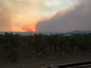 Though taken from the Napa side, this is looking west at the Nuns Fire raging largely in Sonoma County. Taken at Hwy 29 at Oak Knoll Ave on 10/10/17.